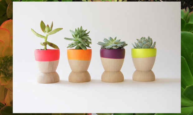 Mini Neon Planters from Apartment Therapy | Featured on DesignWineSunshine!