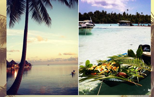 Tahiti-from-Fathom-on-Design-Wine-Sunshine_01