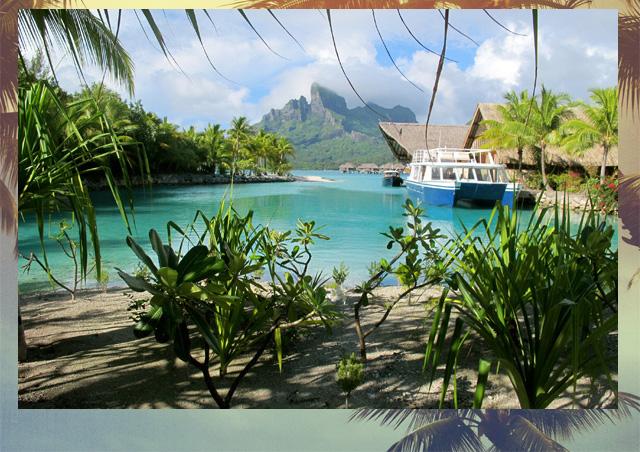 Tahiti-from-Fathom-on-Design-Wine-Sunshine_03