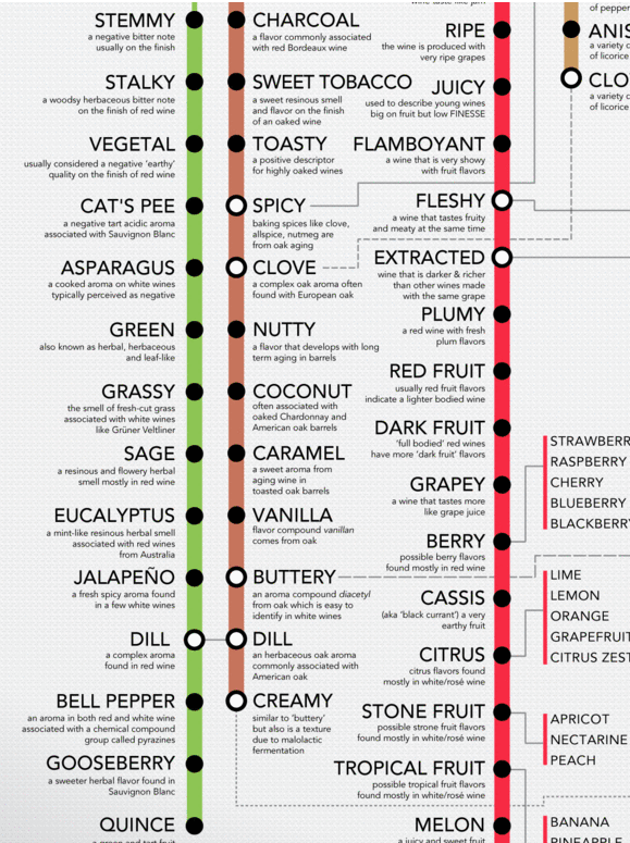 Wine Folly's Wine Descriptor's Guide