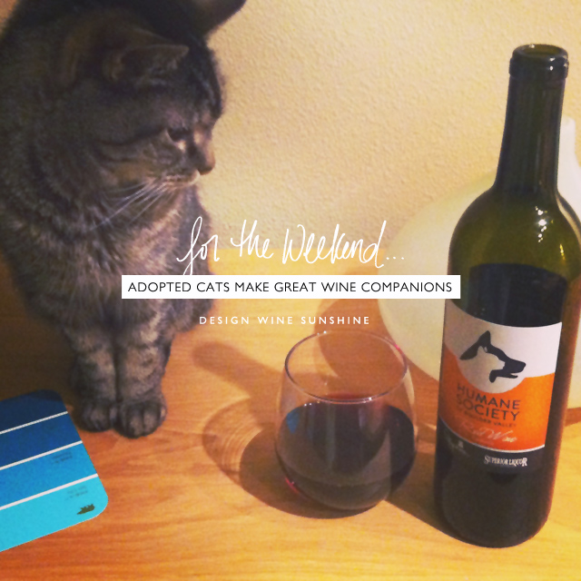 cats-make-great-wine-companions-design-wine-sunshine