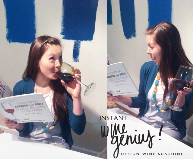 Design Wine Sunshine loves Scratch Sniff Guide to Becoming a Wine Expert