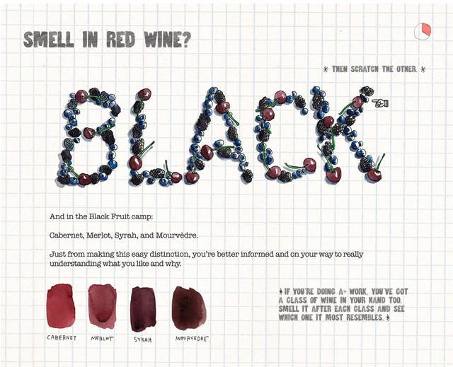 scratch-sniff-wine-book-richard-betts-xo-design-wine-sunshine_02